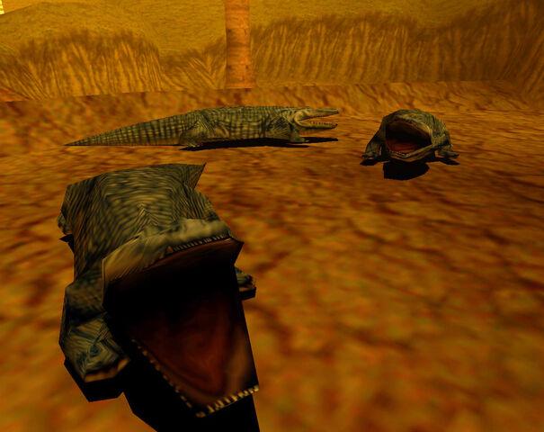File:Crocs 1.jpg