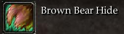 Brown Bear Hide