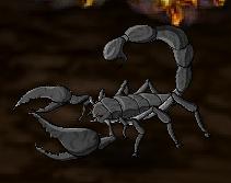 Cave Scorpion