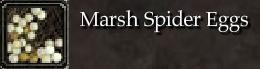 Marsh Spider Eggs