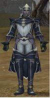 Vail Male Serche Armor