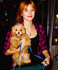 Bella-thorne-pink-checked-shirt-with-kingston
