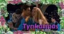 Tynka22