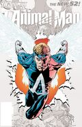 Animal Man Vol 2-0 Cover-2 Teaser