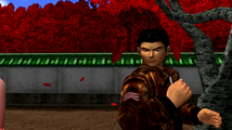 Shen2 Ryo fails at catching leaf