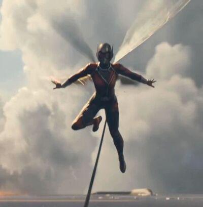 Wasp in flight lq