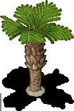 Palm Tree -2-