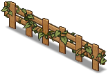 Fence of Ivy -1-