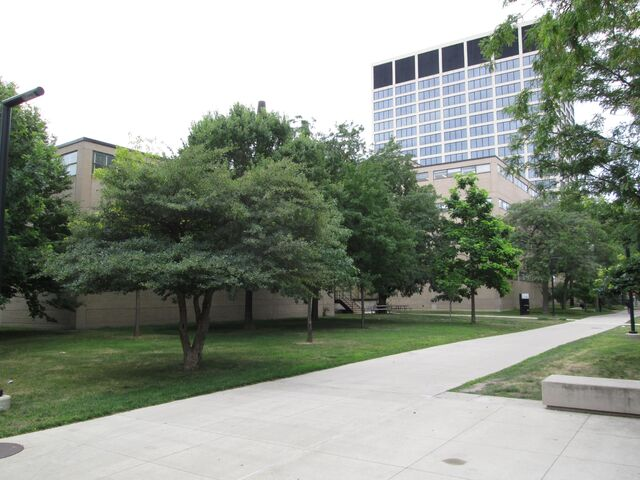 File:Shimer College 3424 S State IIT Tower from northwest.jpg