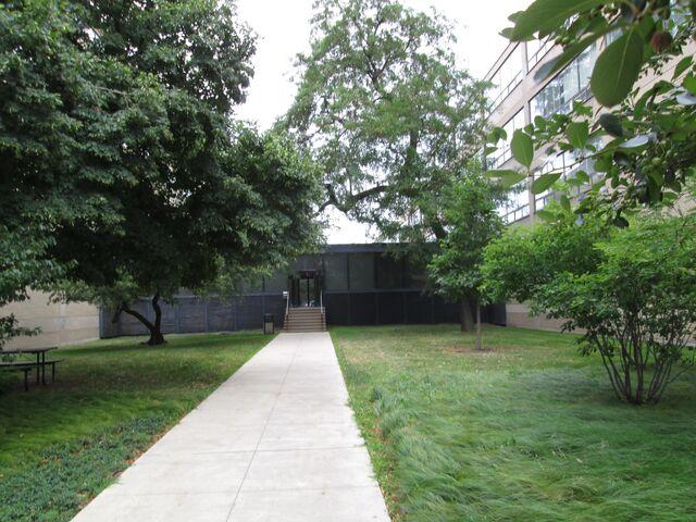 File:IIT Shimer College 3424 3440 S State walkway.jpg