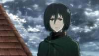 Mikasa arrives