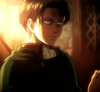 Levi returning from the expedition.png