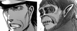 Comparison between Kenny and the Beast Titan