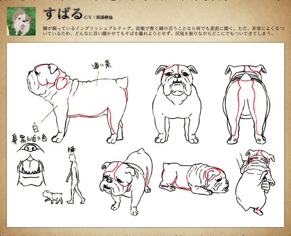 File:Subaru Sketches.png