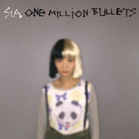 File:One Million Bullets cover.png