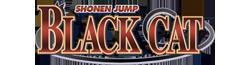 File:BlackCat-Wiki-wordmark.png