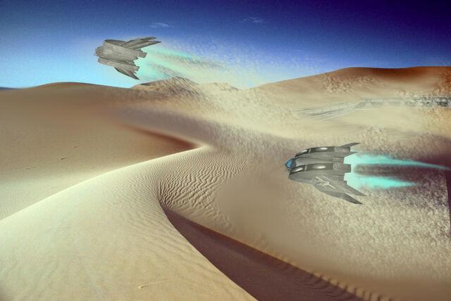 File:Desertmanti1.jpg