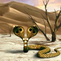 Rad Snake