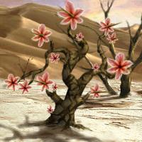 Spine Bloom