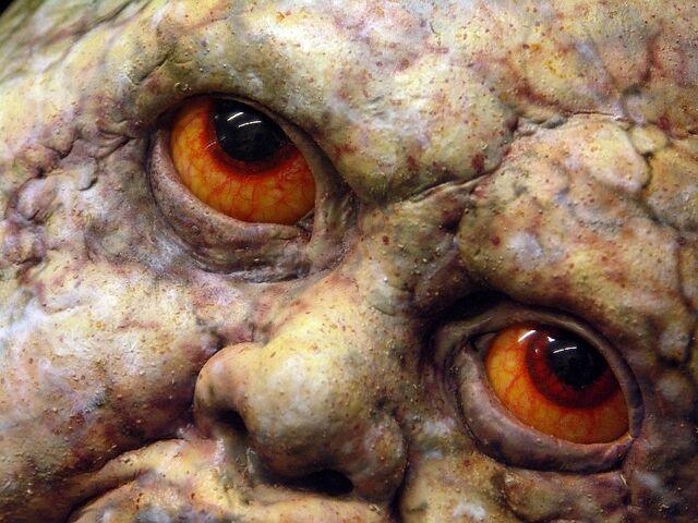 File:Grey Child Close-Up.jpg
