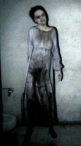 File:P T Lisa Bathroom Crop.png