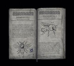Book4 Entomology Volume 3