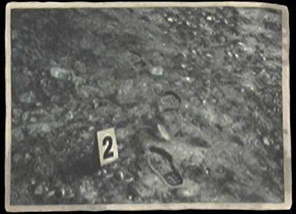 File:Crime Scene Photo -2.jpg