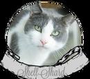 Oc-ShellShard