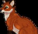 Redd Silvfox