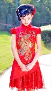 2012-Newest-Chinese-Style-Married-Bridal-Phoenix-Handmade-Cheongsam-Formal-Dress-Advanced-Royal-Evening-Dress