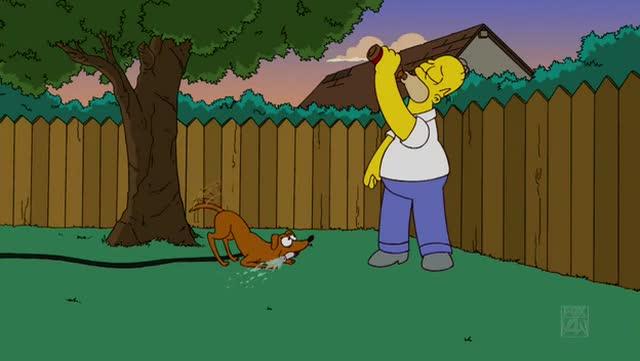 File:Bart gets a Z -00054.jpg