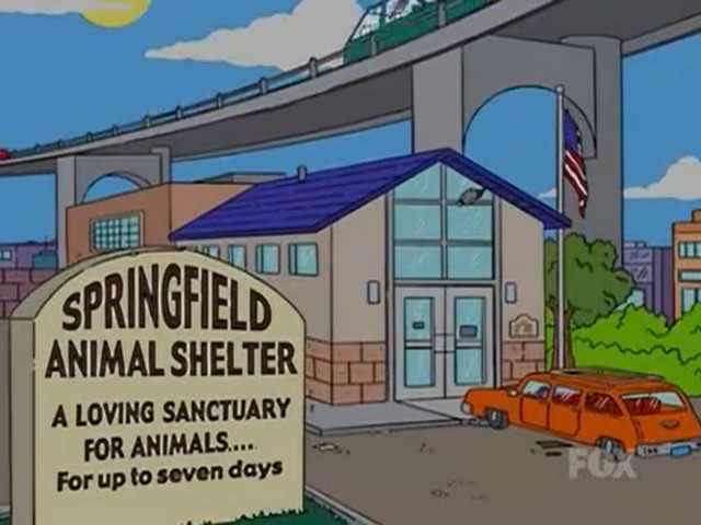 File:Springfield Animal Shelter (I, Annoyed Grunt-Bot).png