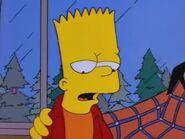 Homer's Phobia 70