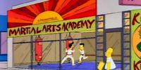 Springfield Martial Arts Academy