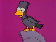 Raven11