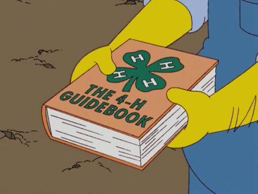 File:4-H guidebook.jpg