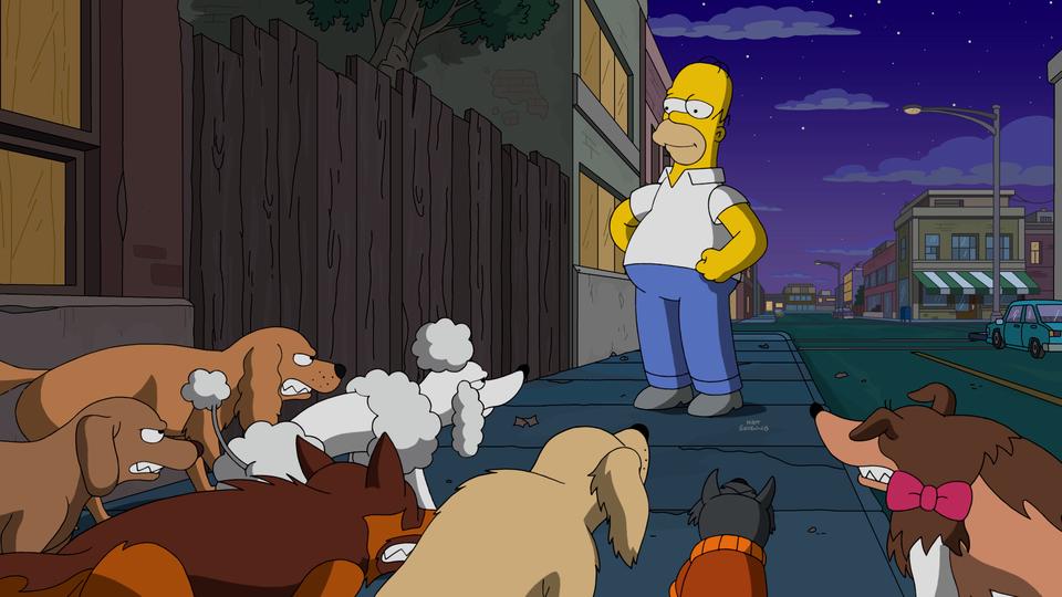 Resultado de imagem para os simpsons Dogtown
