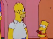 Homer's Phobia 46