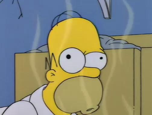 File:Bart Gets an Elephant 15.JPG