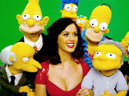 425.perry.simpsons.lc.092710
