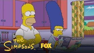 Ned Invites Homer To A Ballgame Season 28 Ep. 20 THE SIMPSONS