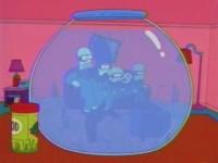 File:Fish bowl.jpg