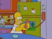Mobile Homer 48