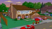 Ned 'N Edna's Blend 71