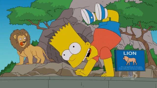 File:A Tree Grows In Springfield (199).jpg