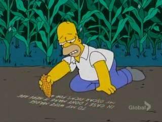 File:Homer Corn Writing.jpg