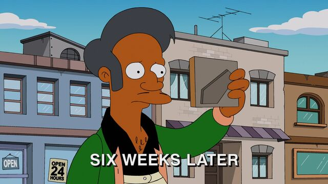 File:Much Apu About Something 50.JPG
