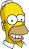 Homer Happy Icon