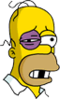 Homer Beaten Icon
