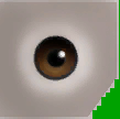 0x5C7A2ED9B6122F44 medbrown eyes copy